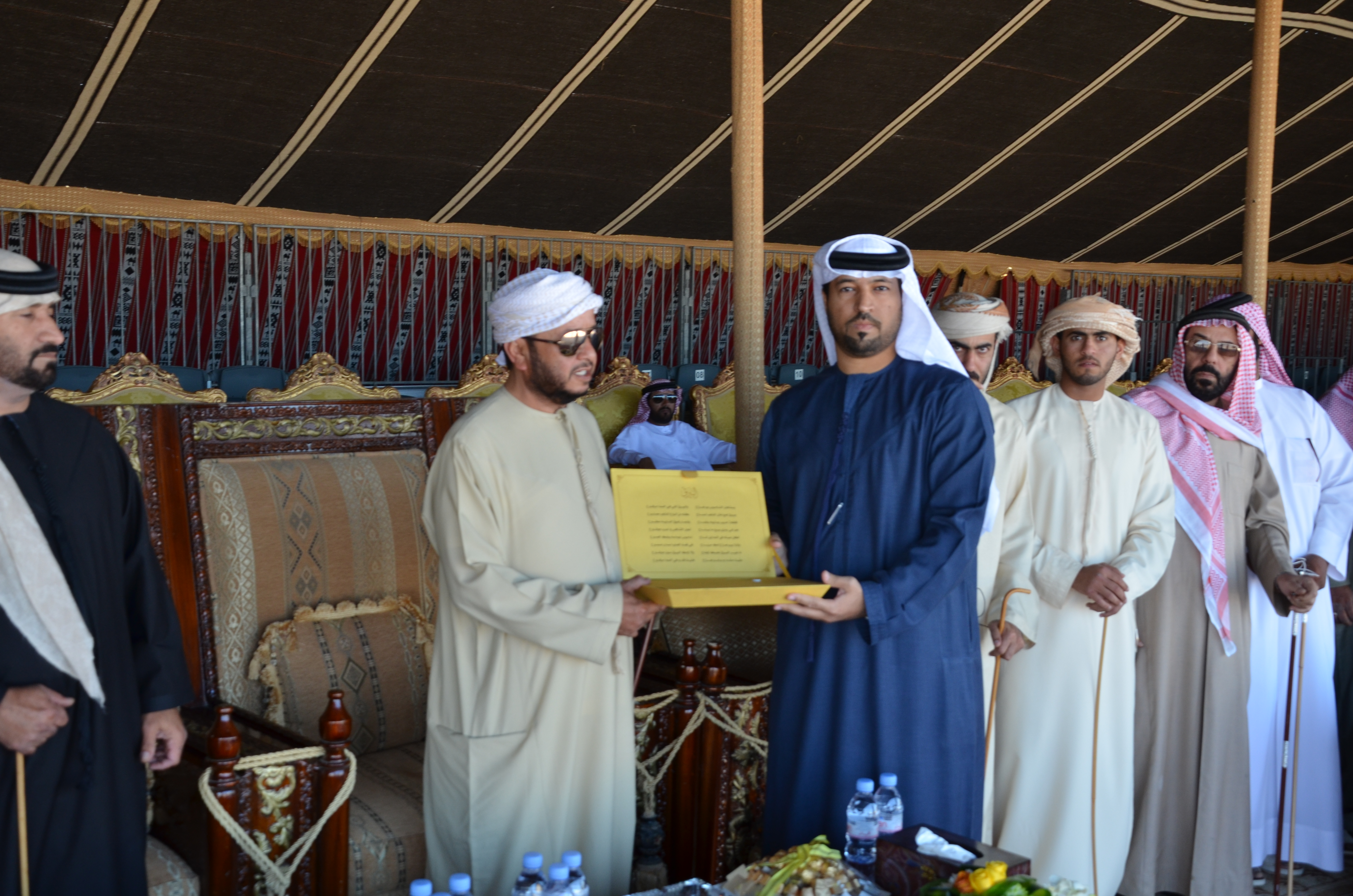 إهداء خاص إلى سمو الشيخ سلطان بن زايد